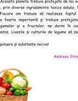 Andreea_Streche_VII_B-1_1618907758