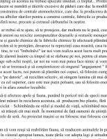 SCRISOARE_MIRUNA_COZMA_VI_A-1_1618907864